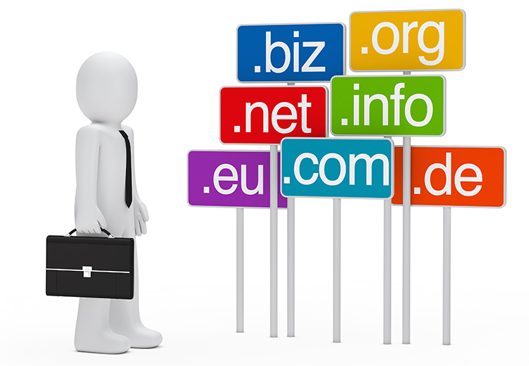 business domain
